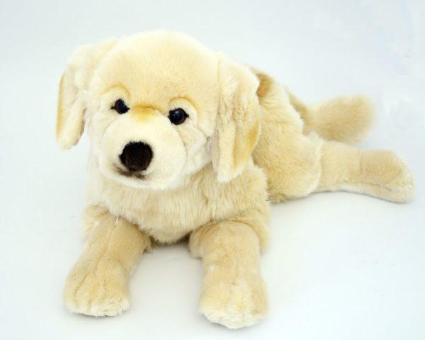 Hunden Rufus