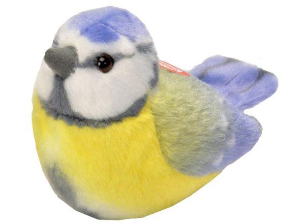 Fågel, Blåmes
