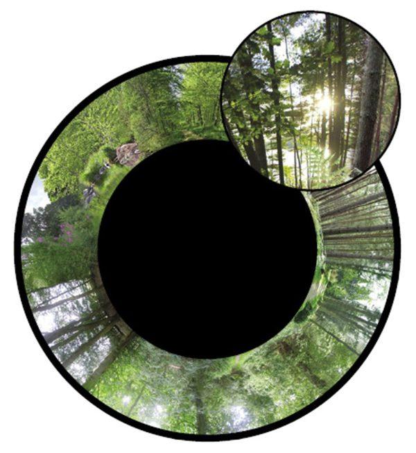 Maxi effekthjul Skogsmotiv, 22.5cm (magnetfäste)