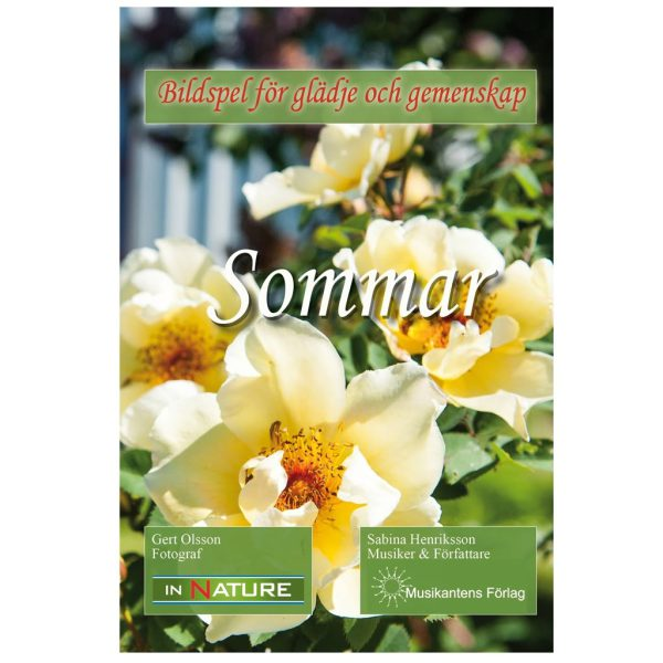 Dvd-Film; Sommar