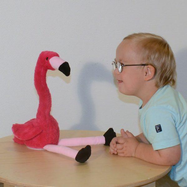 Härmande Flamingo