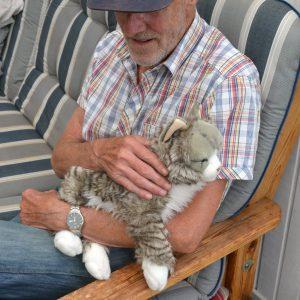 Katten Misan