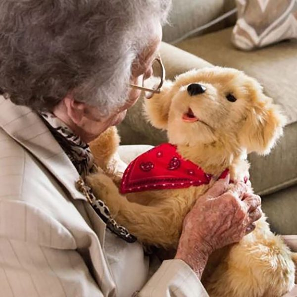 Terapihund Golden Retriever