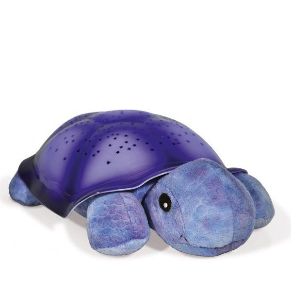 Lysande sköldpadda